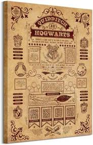 Obraz na plátne Harry Potter Harry Potter (Quidditch At Hogwarts) 60x80cm WDC99975