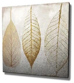 Obraz na plátne Reece, 45 × 45 cm