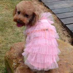 PETOP Ružové šaty Paris pre fenky XS