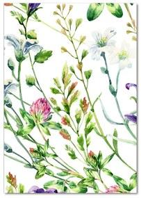 Moderný akrylový fotoobraz Poľné kvety pl-oa-70x100-f-118519583