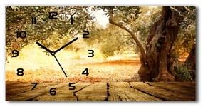 Sklenené hodiny na stenu tiché Olivovník pl_zsp_60x30_f_77330786