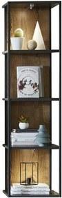 Sconto Regál MANHATTAN dub cognac/čierny kov
