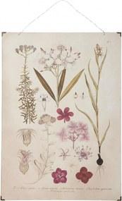 IB LAURSEN Botanický obraz Pink flowers 50x70 cm