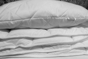 HoD Paplón a vankúš ANTIALERGICKÝ Detský Bavlna/Polyester 60 x 45 90 x 135 cm