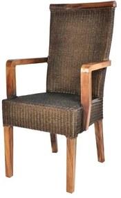 Sconto Jedálenská stolička RAMOSA s podrúčkami