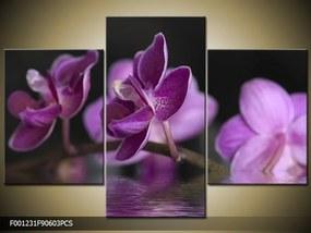 Obraz na plátne Fialové orchidey na vode, Obdĺžnik 120x80cm 87,92 €