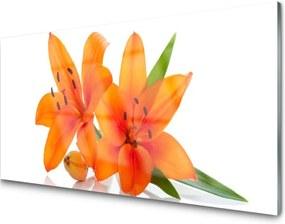 Obraz na skle oranžové Kvety
