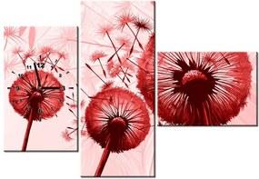 5fb01ac75 Tlačený obraz s hodinami Červené púpavy 100x70cm ZP3861A_3AW