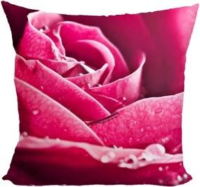 Vankúš Ruža ružová (Veľkosť: 40 x 40 cm)