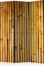 Paraván - Bamboo Garden [Room Dividers] 135x172 7-10 dní