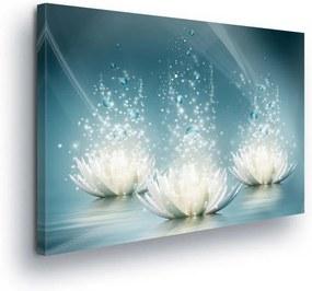 GLIX Obraz na plátne - Diamond Water Lilies II 100x75 cm