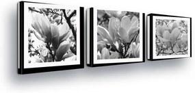 GLIX Obraz na plátne - Black and White Roses in Paspart II 3 x 25x25 cm