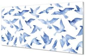Nástenný panel maľované vtáky 100x50cm