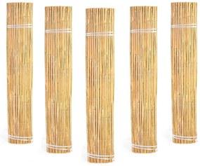 Bambusová zástena 1x6 metrov Bluegarden Millie