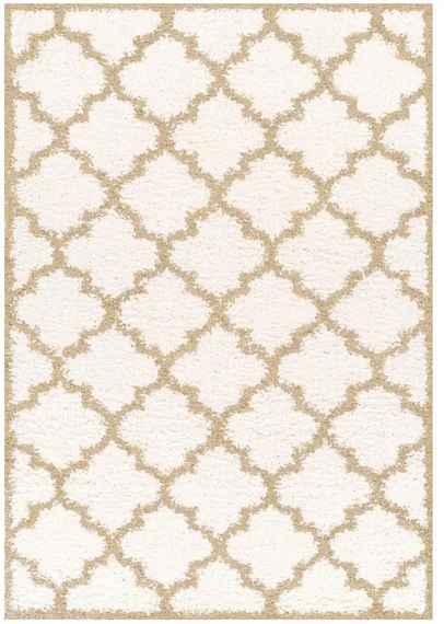 169a70e14 TEMPO KONDELA Batam Typ 1 koberec 67x120 cm slonovinová / krémová